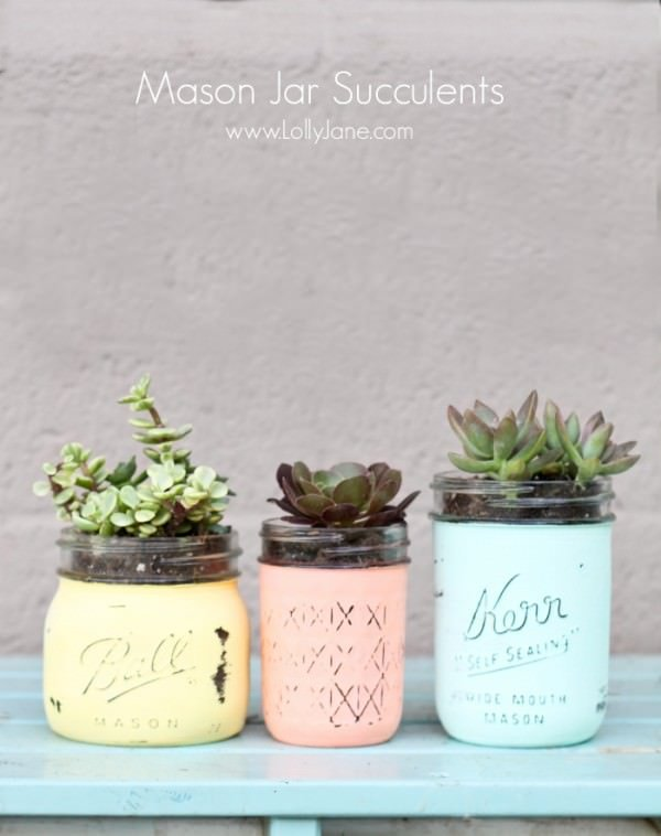 DIY-Mason-Jar-Succulents-LollyJane1.jpg1-600x758