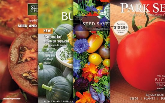 Top 12 Garden Seed Catalogs