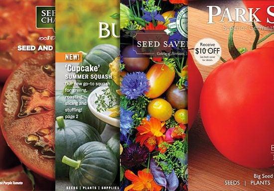 Top 12 Garden Seed Catalogs