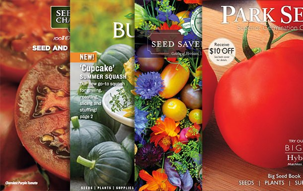 Top 12 Garden Seed Catalogs 2018 The Garden Glove