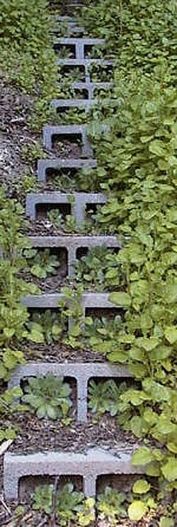 cottage E steps