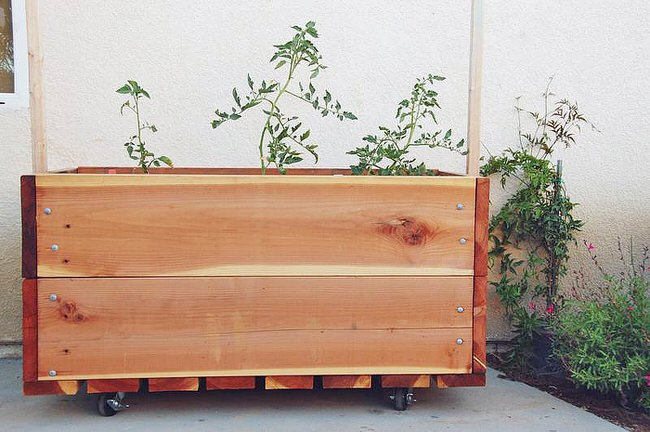 container herb gardens-45