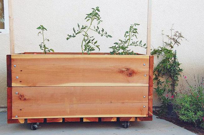 Container Herb Garden Ideas
