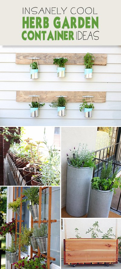 Insanely Cool Herb Garden Container Ideas
