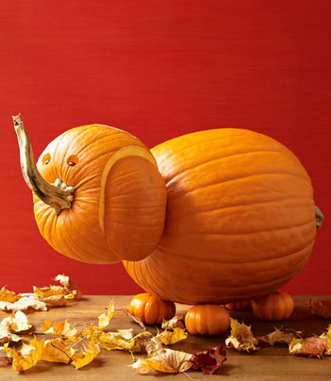 16 Pumpkin Carving Projects You Never Thought Of The