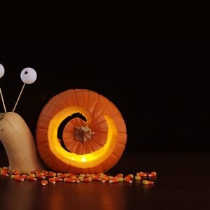 16 Cool Pumpkin Carving Ideas- Snail Pumpkin