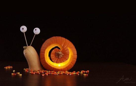 16 Cool Pumpkin Carving Ideas- Snail Pumpkin