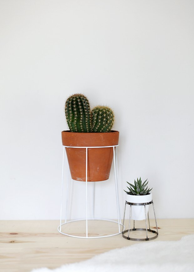 Indoor Cool Cactus & Succulent Projects-10