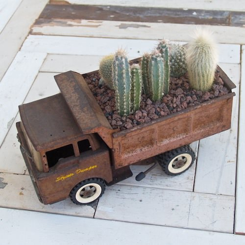 Top 32 Diy Fun Landscaping Ideas For Your Dream Backyard: Indoor Cool Cactus & Succulent Projects