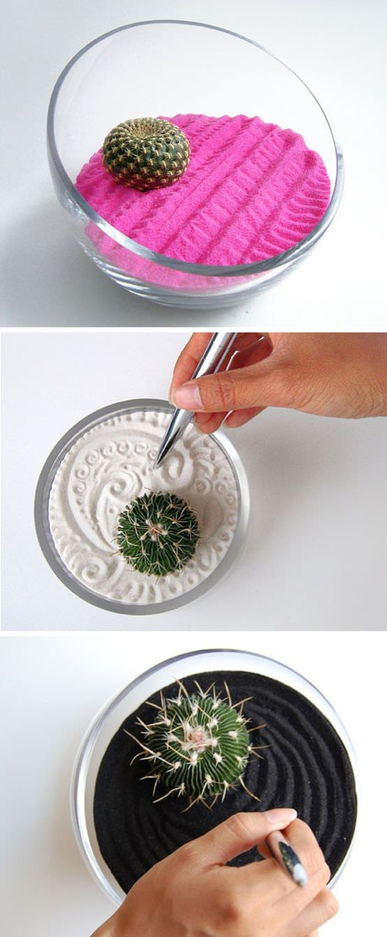 Indoor Cool Cactus & Succulent Projects-9