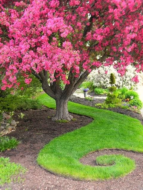 Add whimsy to garden-4