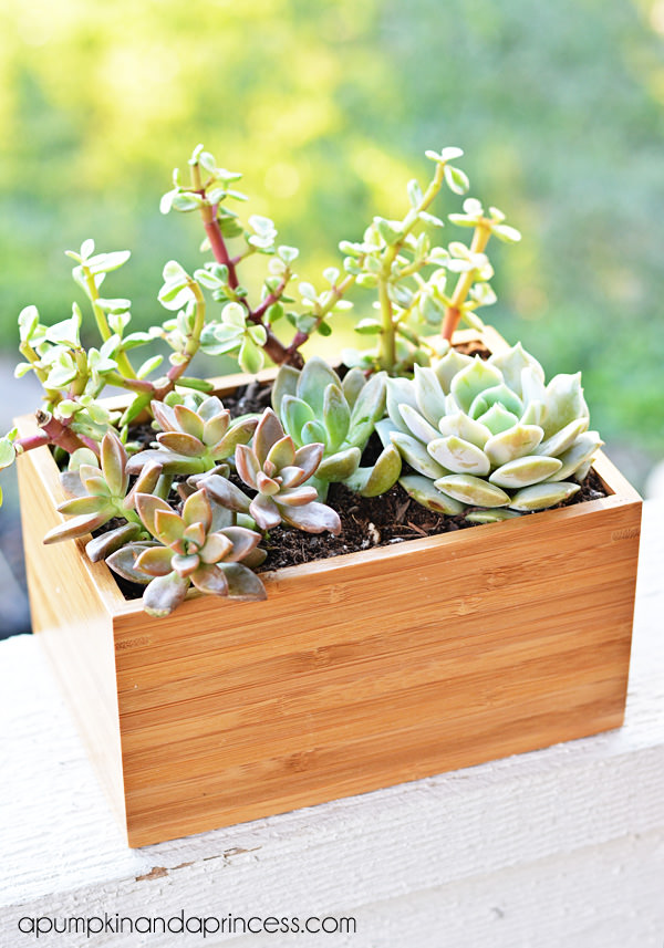 Ikea planter hacks-4