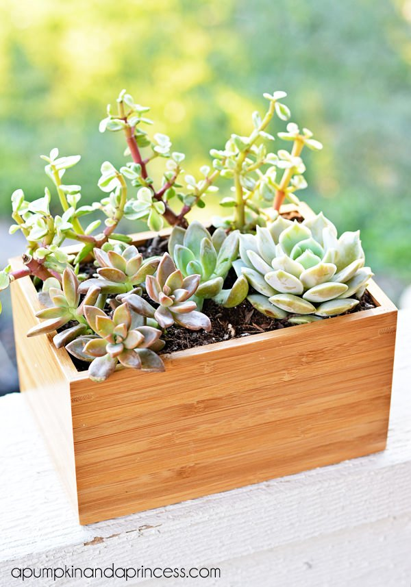 Ikea planter hacks-4