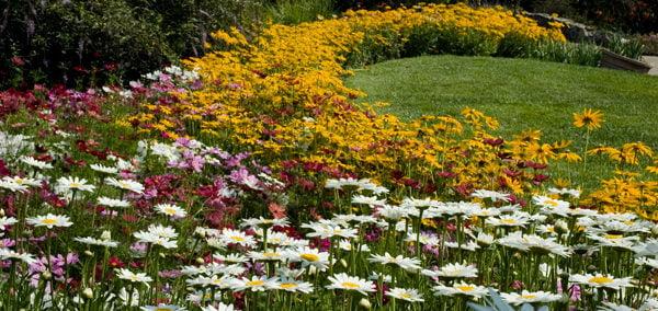 10 Gardens to visit-3