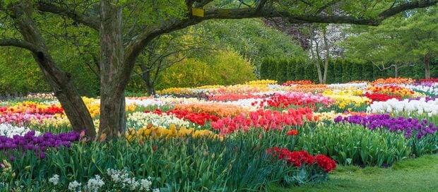 10 Gardens to visit-5