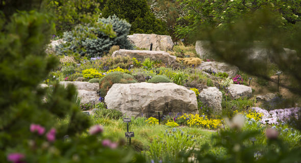 10 Gardens to visit-6