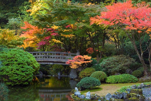 10 Gardens to Visit Before You Die