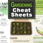 Gardening Cheat Sheets