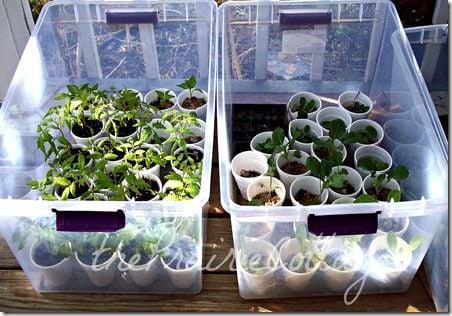 DIY garden hacks-11
