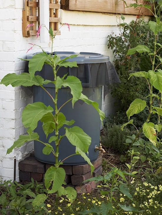 DIY garden hacks-12