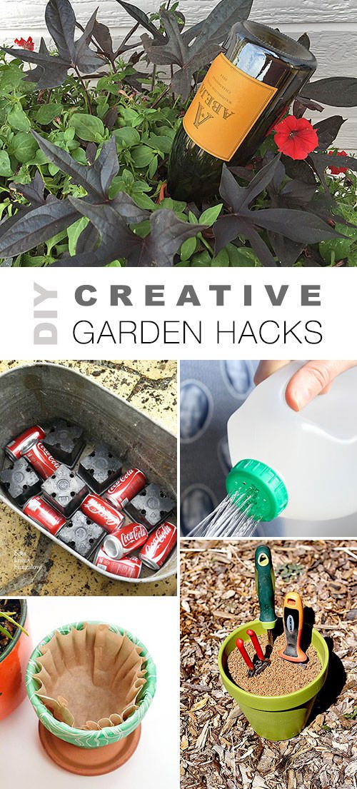 recycle them by using them to control those invasive plants in your garden were looking at you - Garden Hacks