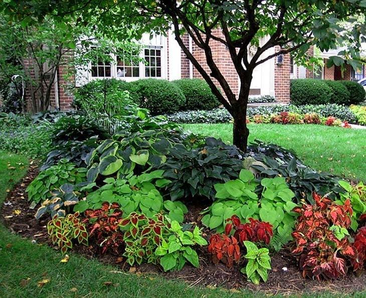 Landscape Island Ideas & Garden Bed Design