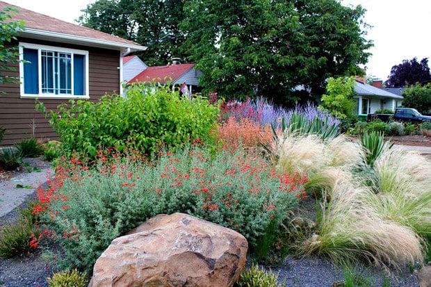 10 no fail perennials for low water gardens the garden glove. Black Bedroom Furniture Sets. Home Design Ideas