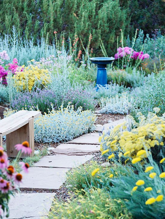 10 no fail perennials for low water gardens the garden glove for Low water landscaping plants