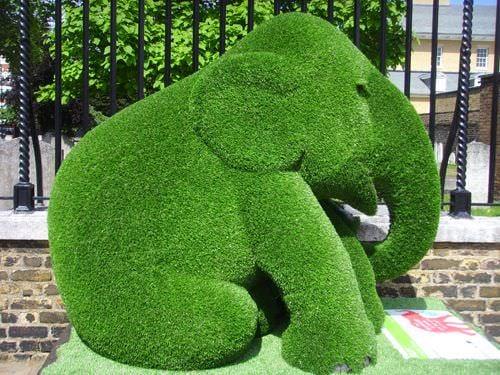 DIY topiary-10