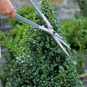 DIY Garden Topiary Projects