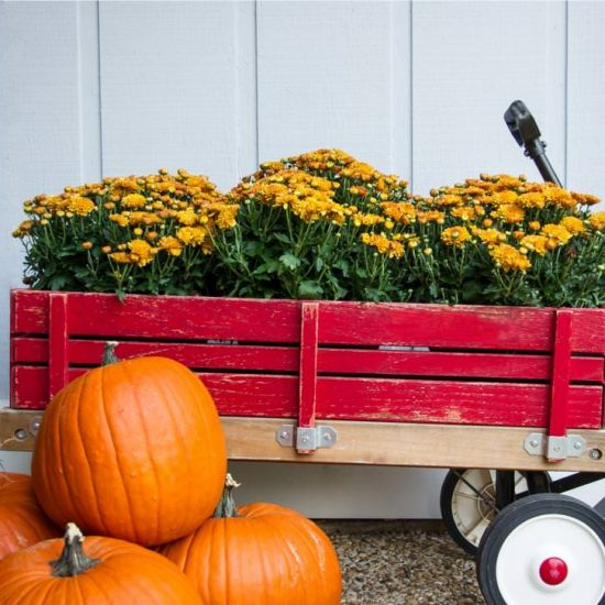 Fall Porch Decor & Outdoor Decorating Ideas- Red Wagon