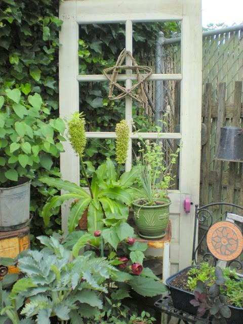 Windows and doors in garden-3