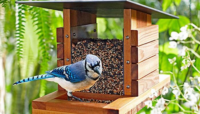 16 Diy Bird Feeders That Actually Look