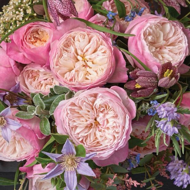 How To Plant English Roses