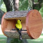 16 DIY Bird Feeders That Actually Look Amazing!