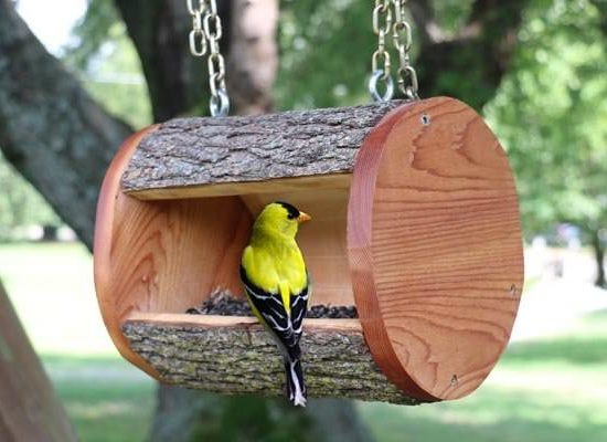 Creative DIY Bird Feeders