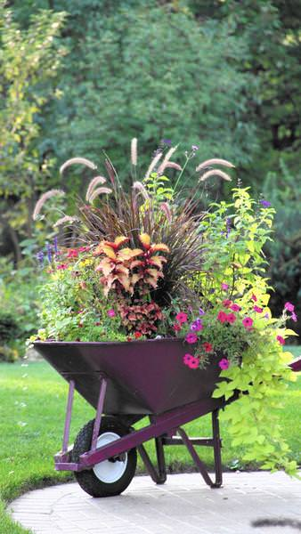 Planter Ideas For Fall Wow Em In 3 Easy Steps The Garden Glove
