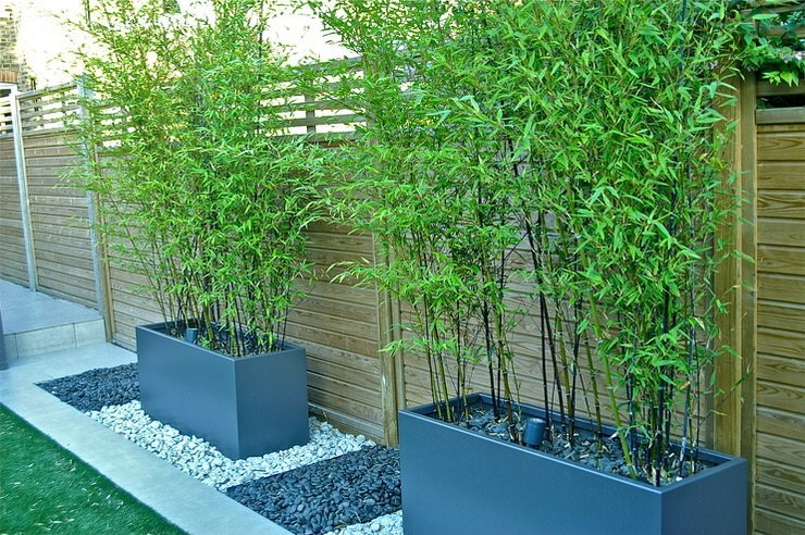 DIY Outdoor Screens and Backyard Privacy Ideas | The Garden ... on ideas for backyard walkway, ideas for backyard landscape, ideas for backyard garden, ideas for backyard spa, ideas for backyard lighting, ideas for backyard patio, ideas for backyard deck, ideas for backyard design, ideas for backyard fencing, ideas for backyard pergola, ideas for backyard planter,