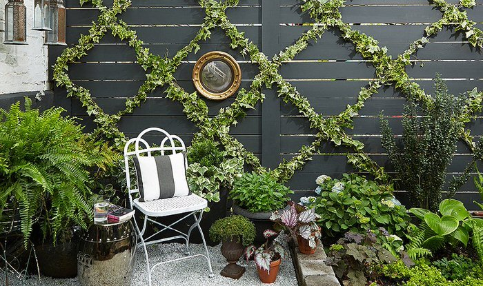 Build a Chic and Easy DIY Garden Trellis