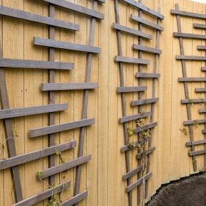 Build a Chic and Easy DIY Garden Trellis
