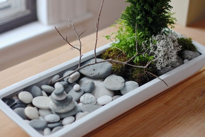 make your own diy mini zen gardens the garden glove. Black Bedroom Furniture Sets. Home Design Ideas