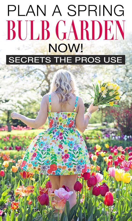 Plan A Spring Bulb Garden Now