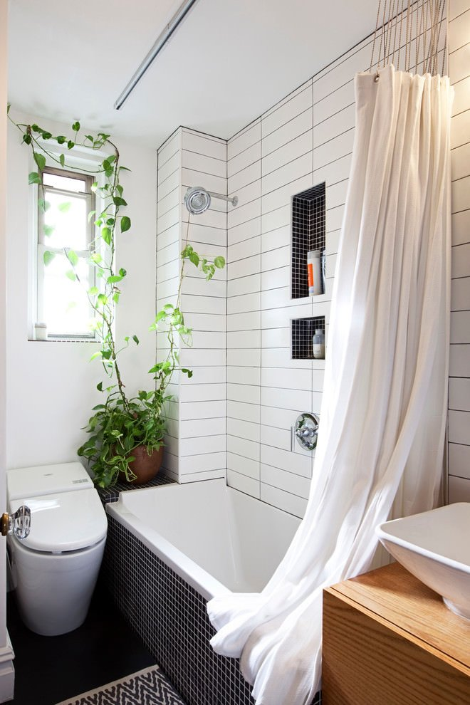 Bath Amp Shower Plants How To Join The Trend The Garden