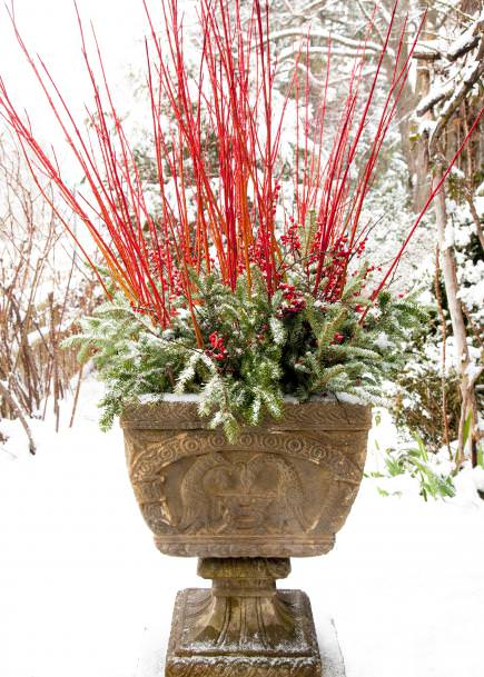 How To Make Winter Garden Planters The Garden Glove