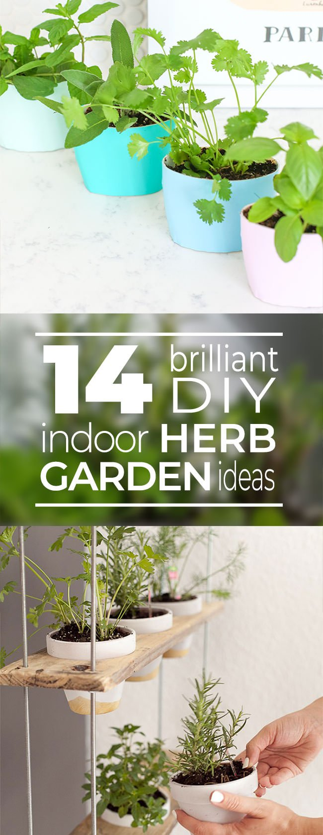 Indoor Herb Garden Ideas. 14 Brilliant Diy Indoor Herb Garden Ideas