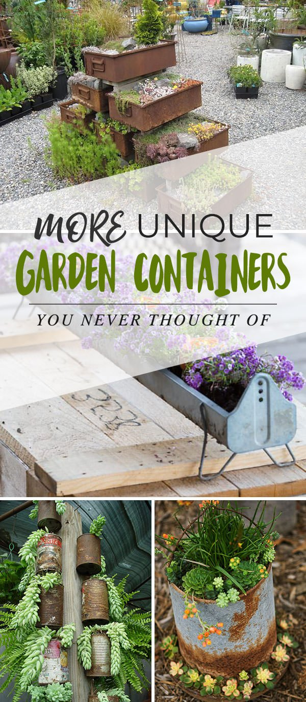 More Unique Garden Containers You Never Thought Of...
