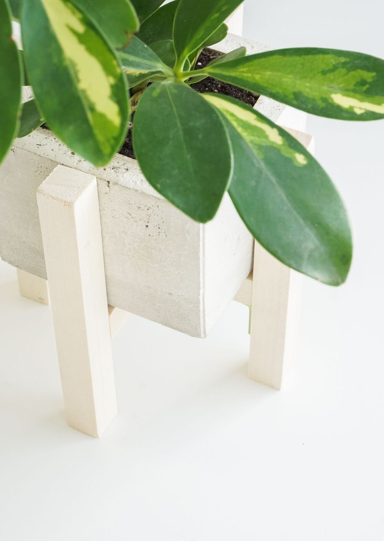 Buy or DIY? | 16 Cool Planters