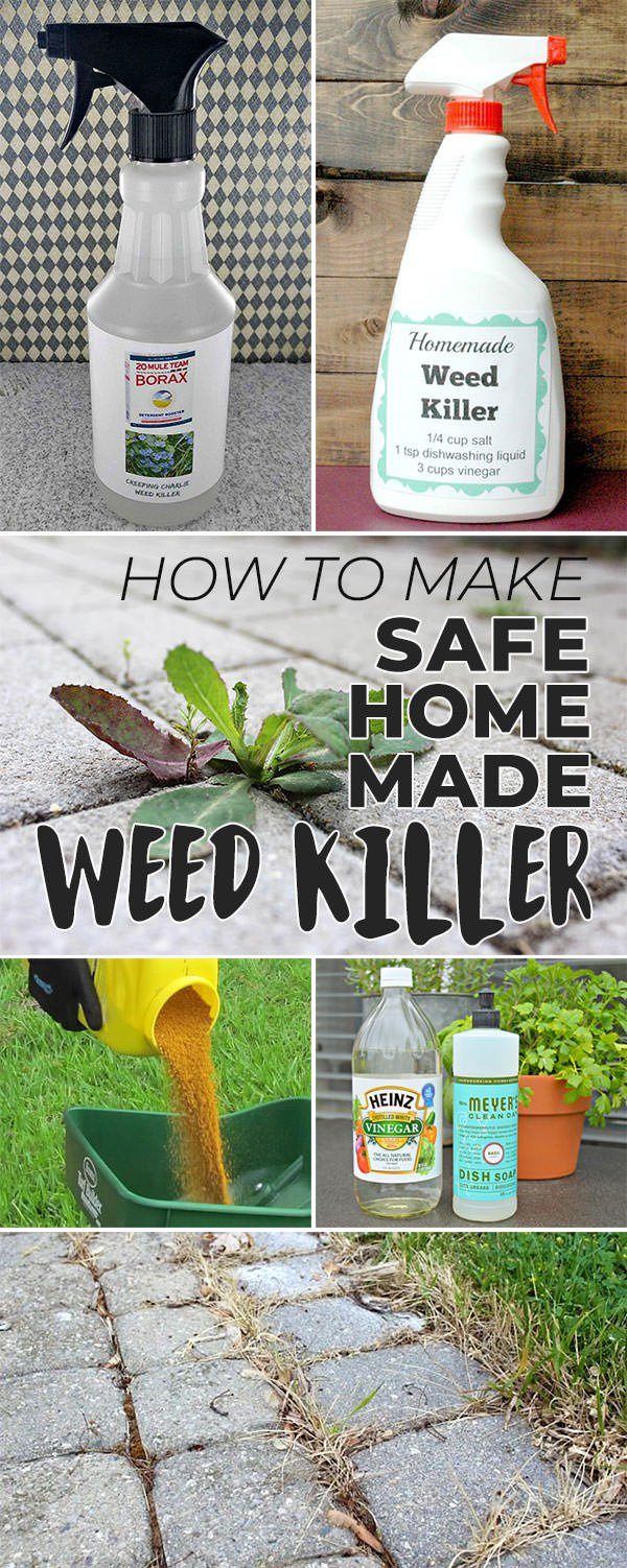 How to Make Safe Homemade Weed Killer