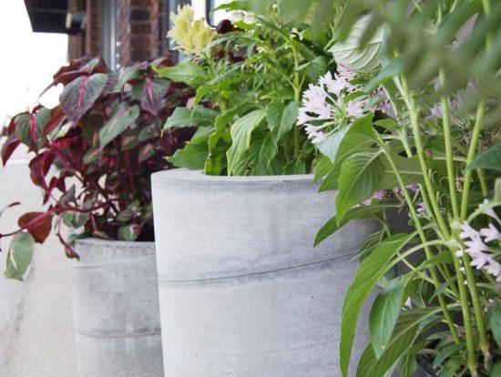 DIY concrete garden planters