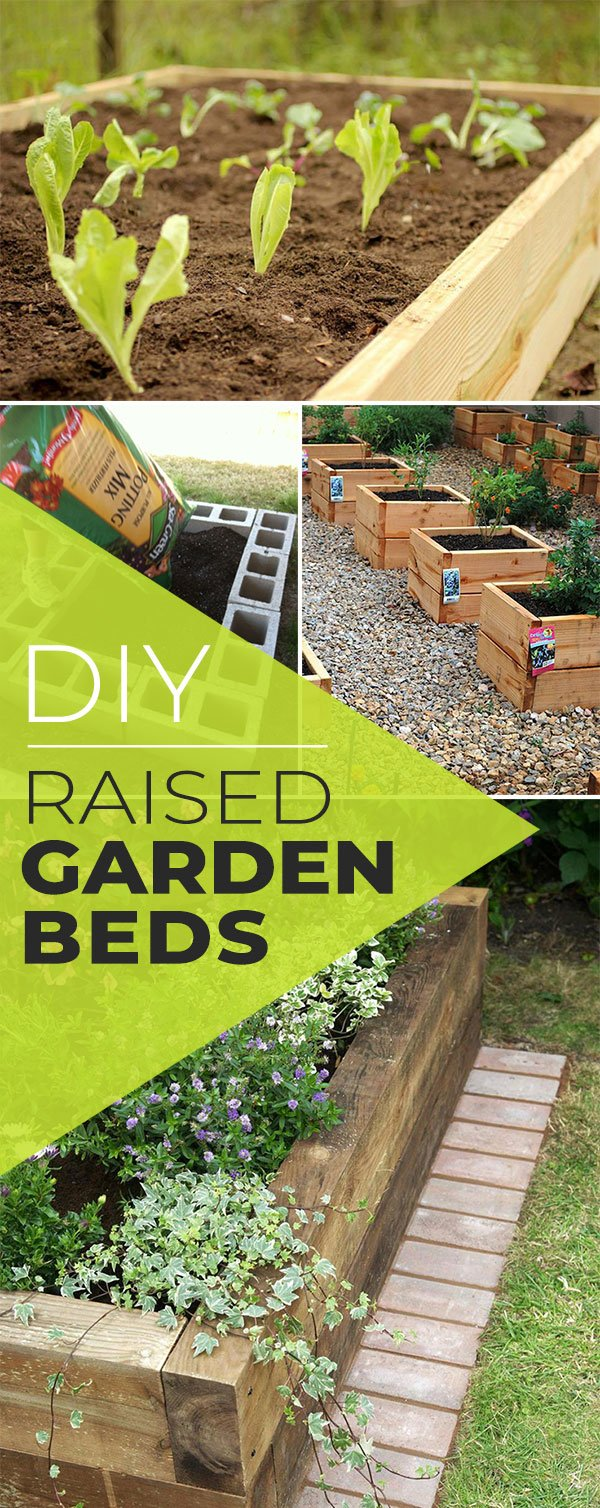 From U0027HGTVu0027, Learn How To Build A Raised Bed With The Basics. Use This For  A Raised Flower Bed, Vegetable Bed Or Even For Herbs. This Is A Cheap Raised  Bed ...